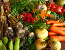 Six Food Positives for 2016